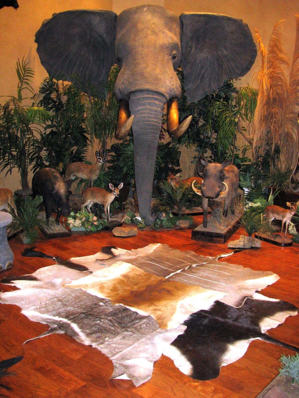 Trophy Room Design Ideas: Preserving Africa Through Artistry